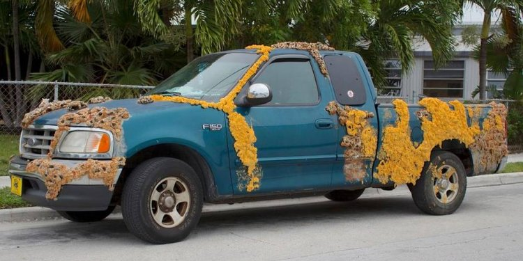 To customize your truck